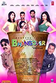 Journey Of Bhangover (2017) (HDTV Rip)